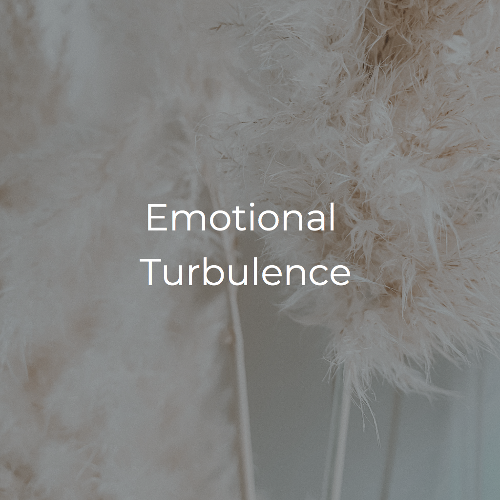 Emotional Turbulence